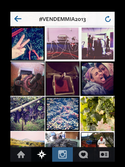 #vendemmia2013_Instagram