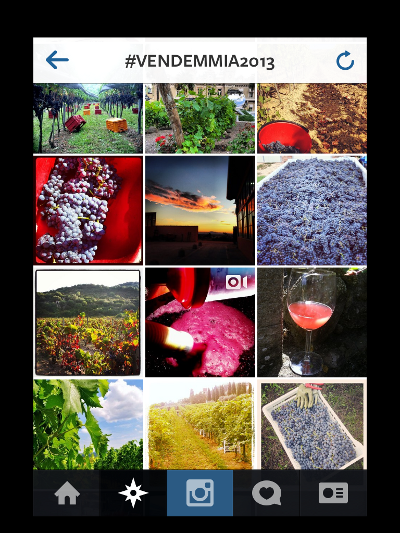 #vendemmia2013_Instagram2