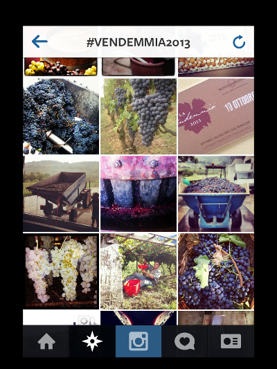 #vendemmia2013_Instagram4