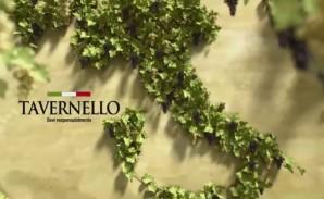 Tavernello: il vino si fa con l'uva